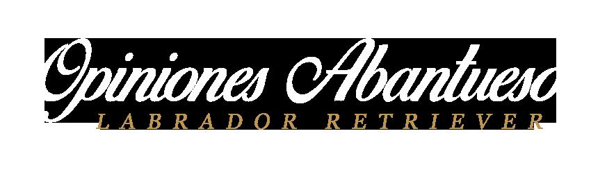Opiniones Labrador Retriever de Abantueso